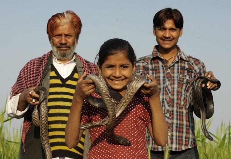 Девочка из Индии с коброй